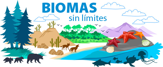 diferencia entre bioma y ecosistema yahoo