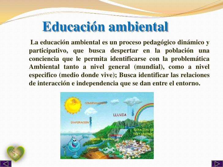 que relacion existe entre educacion ambiental y ecologia