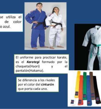 que es mejor karate judo o taekwondo