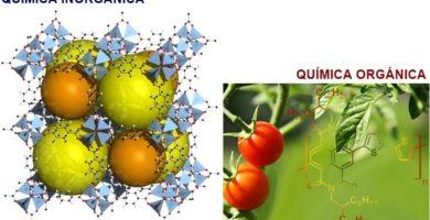 diferencia entre quimica organica e inorganica yahoo