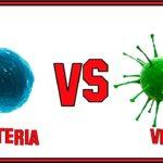 diferencia entre virus y bacteria yahoo