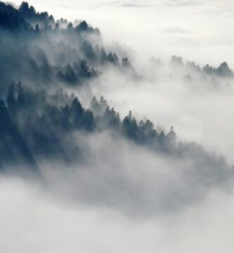 Niebla y Neblina