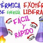 Reacción Endotérmica y Exotérmica