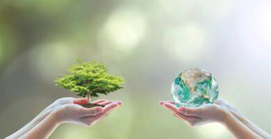 ¿Diferencia entre Impacto y Aspectos Ambiental? Te lo explicamos todo
